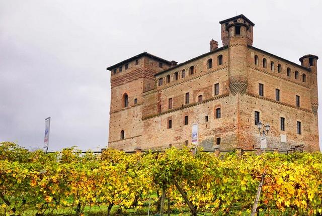 château vignes